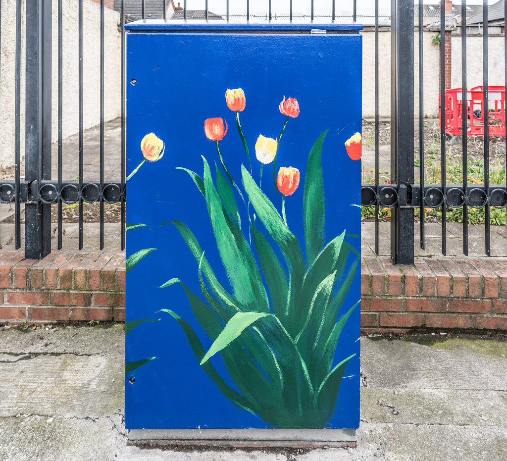 THIS INSTALLATION IS LOCATED NEXT TO THE BACK PAGE PUB IN PHIBSBORO [WAS THE RED WINDMILL PUB]-121620