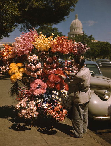 Flower vendor in Havana, Cuba