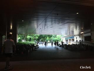 CIRCLEG 香港 遊記 美孚 嶺南之風 荔枝角公園  (54)