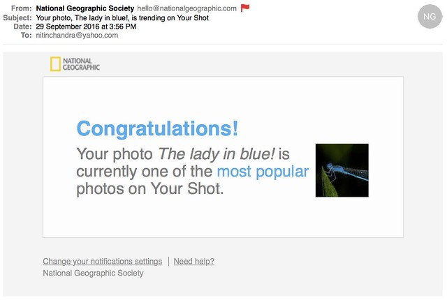 Your photo The lady in blue is trending on Your Shot