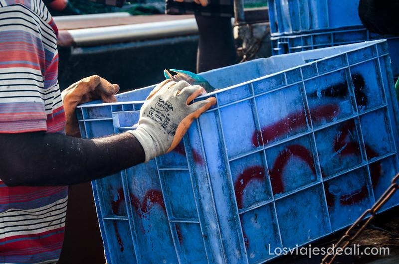 descargando pescado en el puerto de Masirah