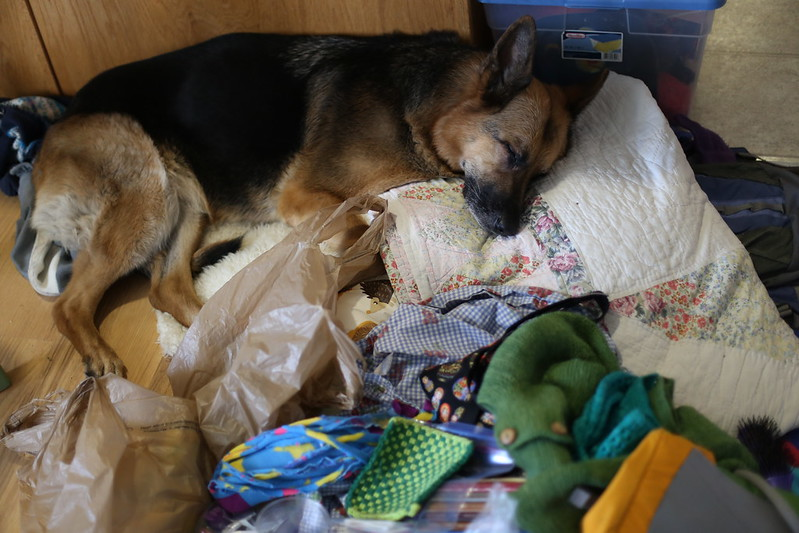 Nara passed out in the big camping mess