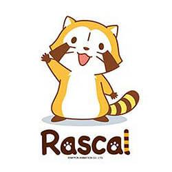 Rascal 小浣熊