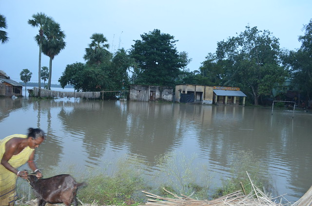 Flood Relief at Howrah District, West Bengal