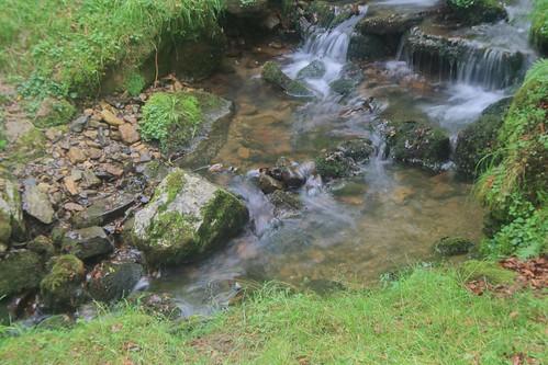 Parque Natural de #Gorbeia #DePaseoConLarri #Flickr - -920