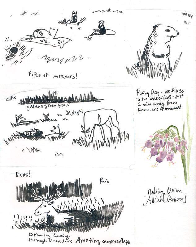 Sketchbook #99: Trip to Banff