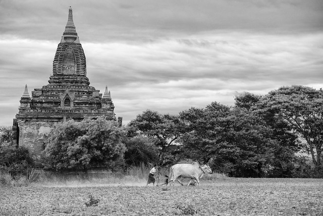 Temples in Old Bagan - Myanmar