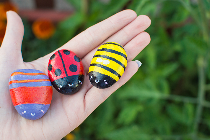 blog_insect_stones