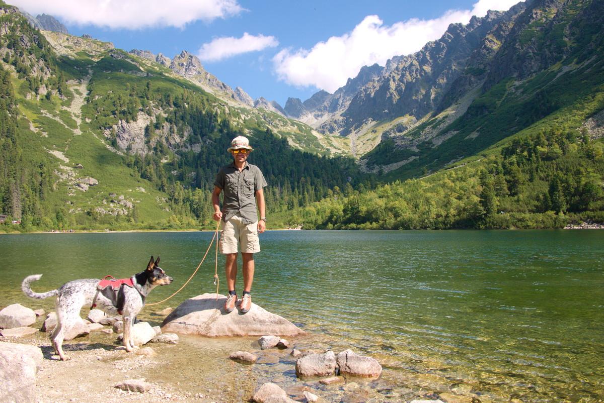 pies Tatry słowackie