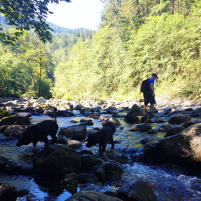 My family tromping around in a river on the way to Twin Falls. 💦