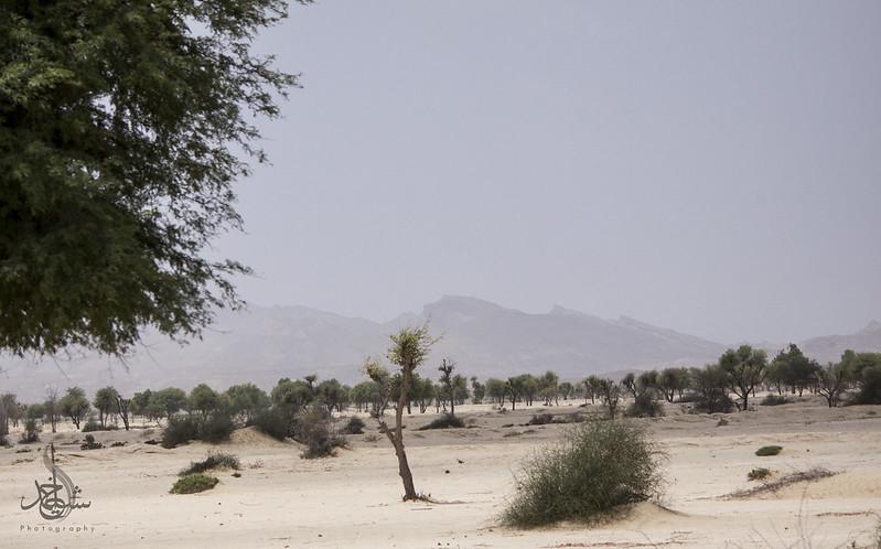 Extreme Off Road To Pir Bhambol Balochistan On August 12, 2016 - 29309902285 840ef12b79 c
