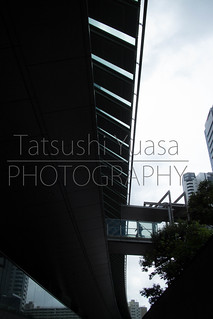 IMG_9651.jpg