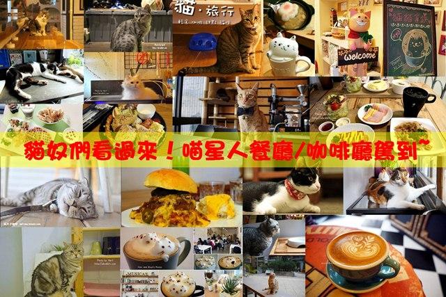 【喵星人餐廳/咖啡廳攻略】貓奴們請注意,這兒有貓貓啦!