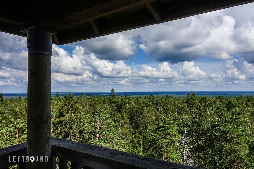 Watchtower view