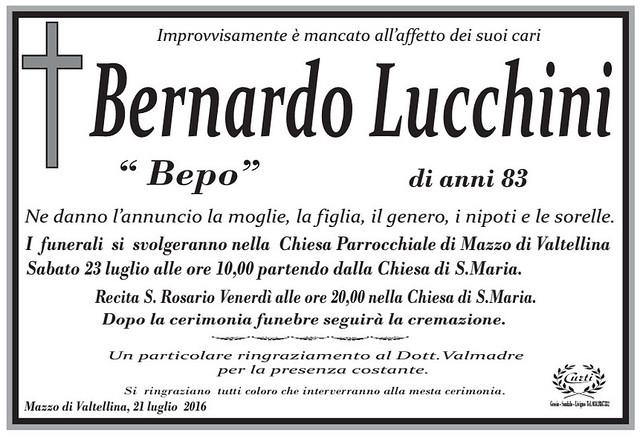 Lucchini Bernardo