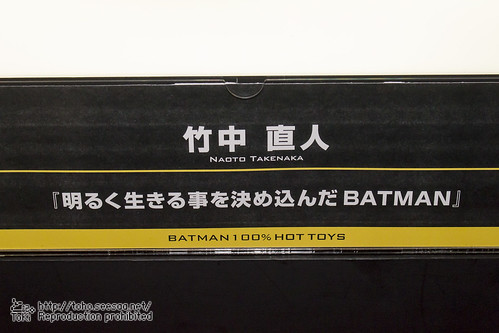 BATMAN100_HotToys_2-763