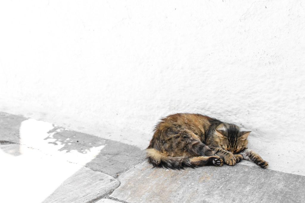 Paradise in Oía, Santorini | Adelante