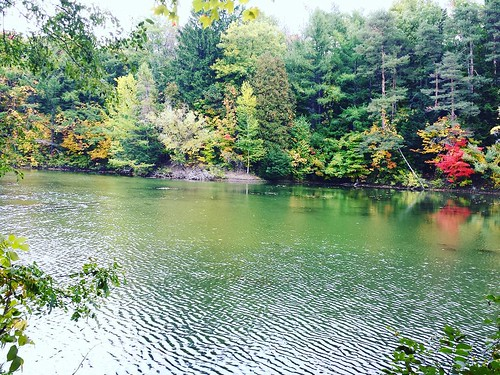 The pond at Chestnut Ridge #ChestnutRidge #OrchardPark #wny #autumn