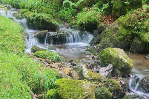 Parque Natural de #Gorbeia #DePaseoConLarri #Flickr - -913