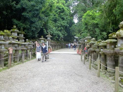 jp16-Nara-j1-Kasuga Taisha (10)