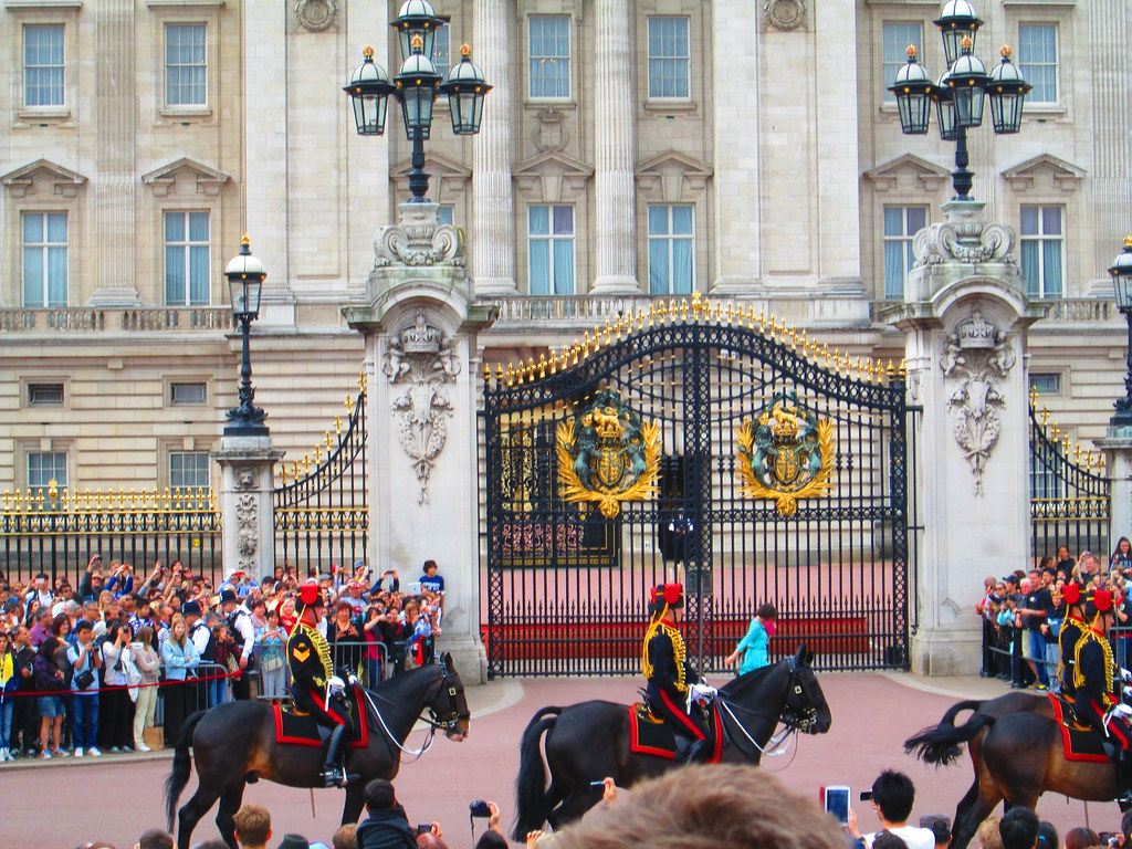 Changing of the Guard Horse, Buckingham Palace