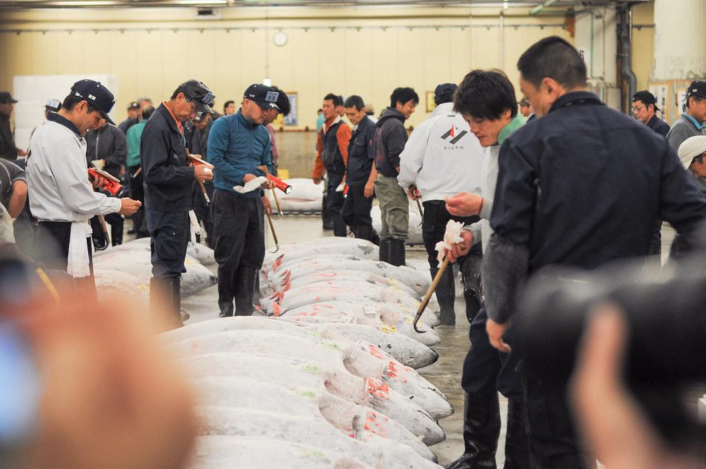 tokyo tuna auction
