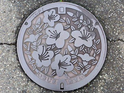 Ichijima Hyogo, manhole cover 2 (兵庫県市島町のマンホール2)