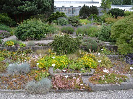 berggarten 4 locuri de vizitat in Hanovra
