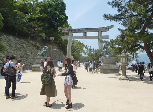 jp16-Myajima-Itsukushima-avant-midi (1)