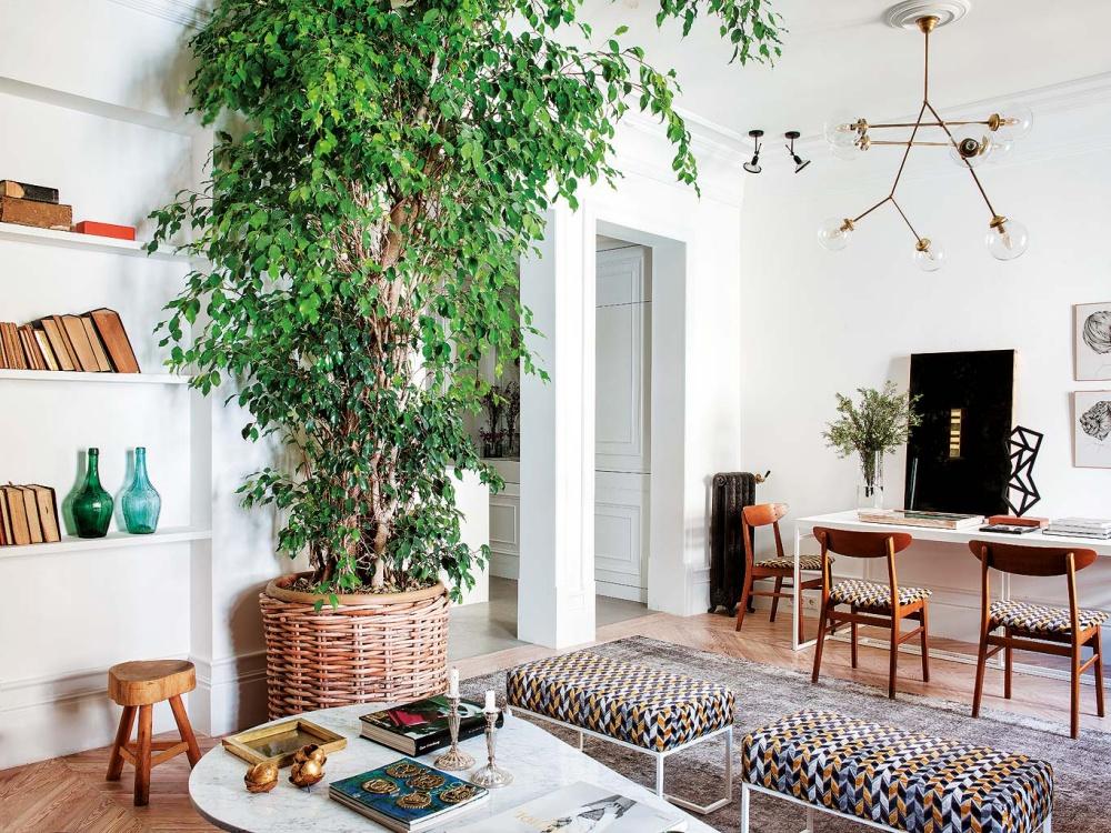 Interior Designer Tristan Domecq Apartment