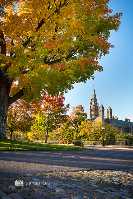 Photograph of Parliament Hill in Ottawa on an autumn morning
