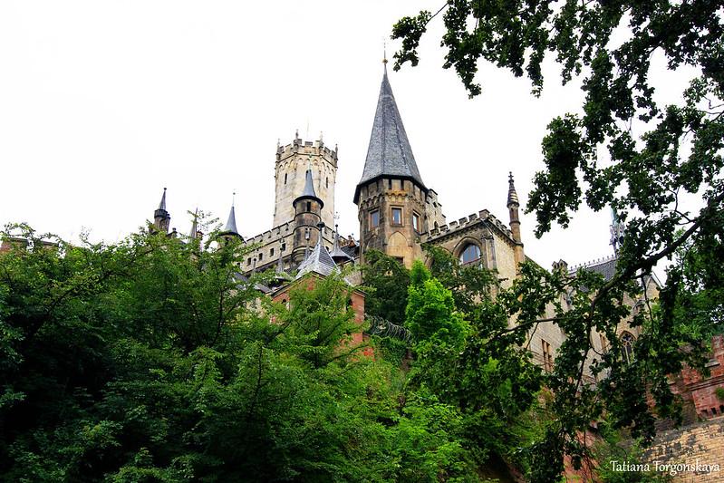 Вид на замок из леса