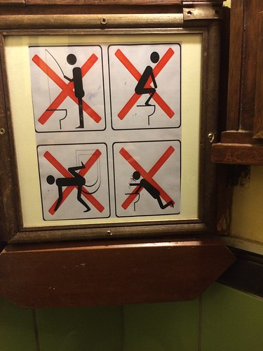 We apparently needed instructions on how to use the toilet here though
