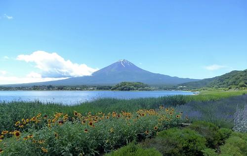 jp16-Fuji-Kawaguchiko-Nord-Shizen Seikatsu-kan (1)a