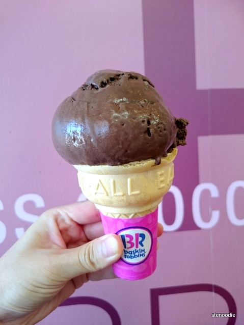 Chocolate Fudge on regular cone