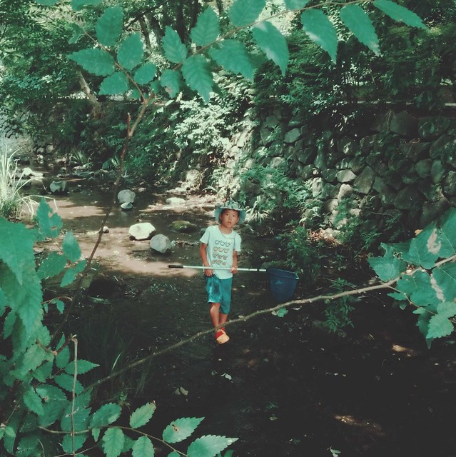 Young boy carrying insect net in river