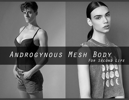 """Survey for Second Life """"Androgynous Mesh Body"""""""