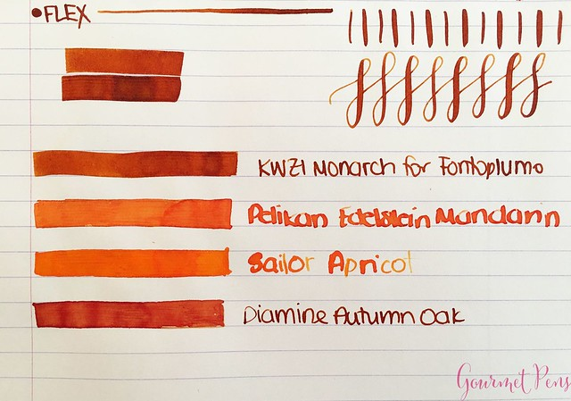 Ink Shot Review KWZI Monarch for @Fontoplum0 5