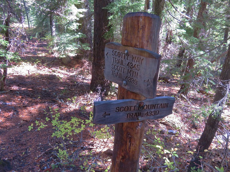 Scott Mountain Trail junction with the Scotty Way Trail