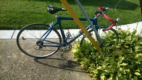 Bait bike?