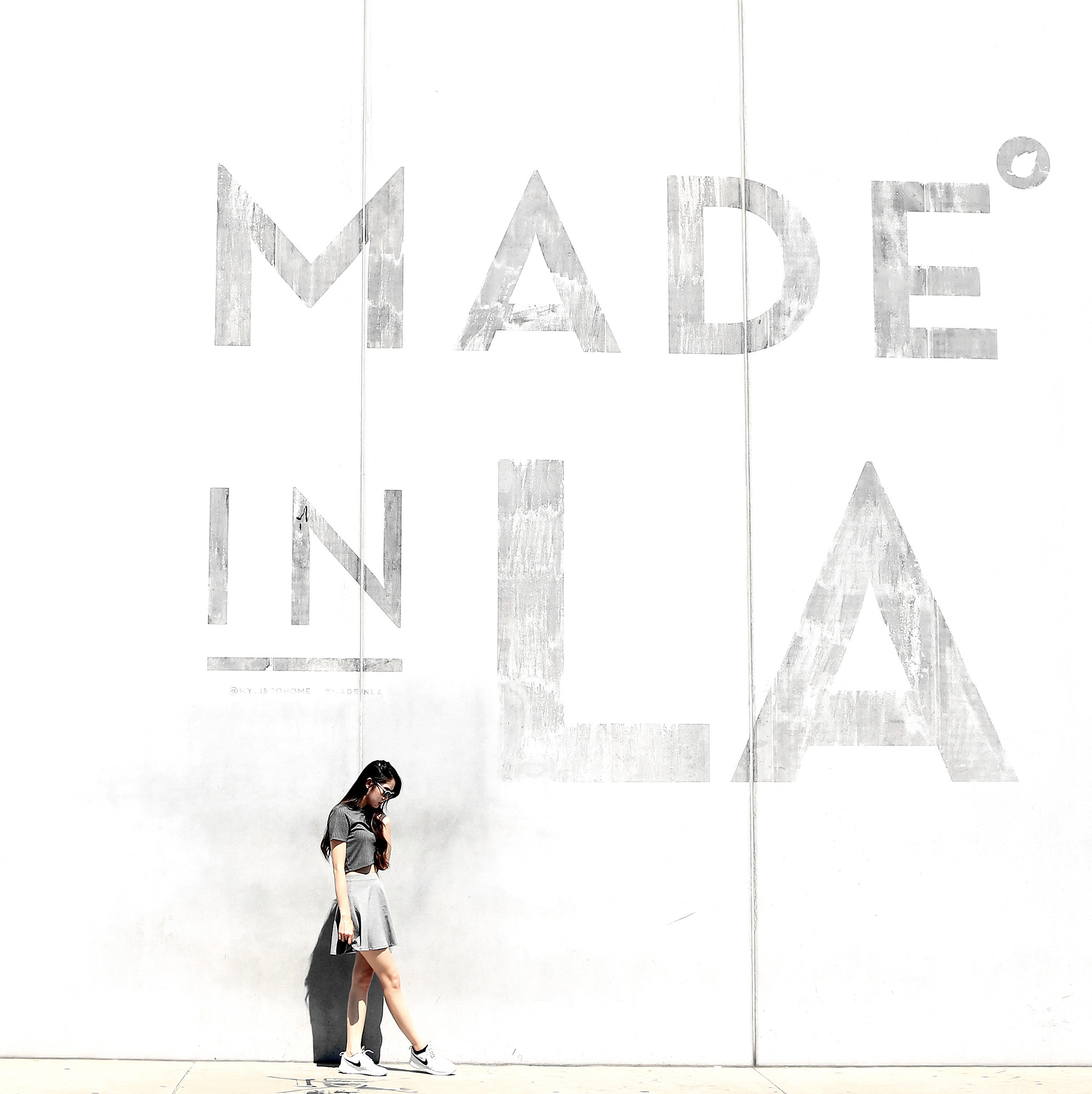 0316-made-in-la-los-angeles-dtla-hipster-wall-art-sporty-chic