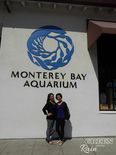 160703f Monterey Bay Aquarium _089