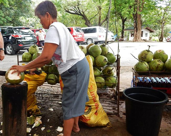 chop-coconuts