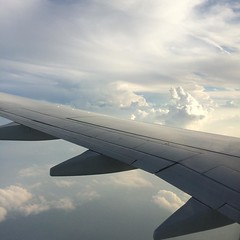 NRT--->ITM from up above, using the 15 minutes free wifi❤︎ #jal #japan