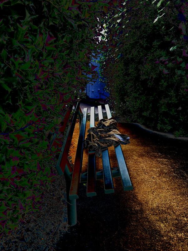 IMG_2534 edit