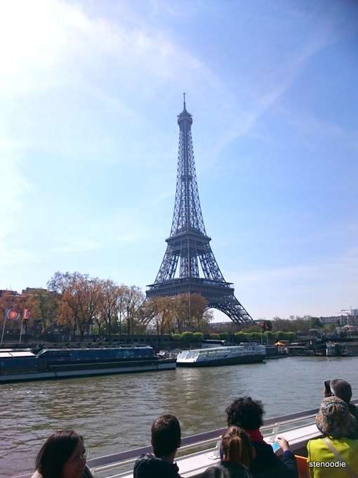 Eiffel Tower seen from the river