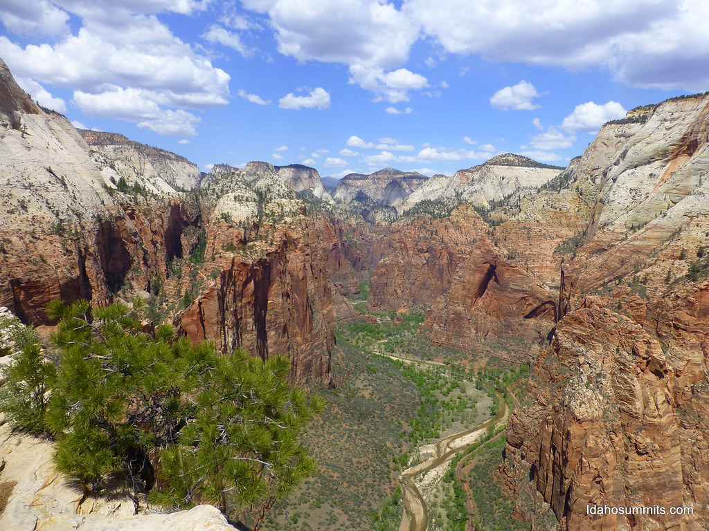 Looking north from Angel's Landing