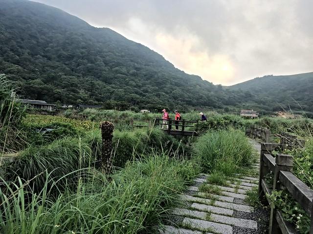 竹子湖2016071706點 (22)