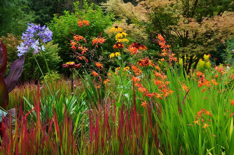 Plitt garden (Vancouver, Washington)