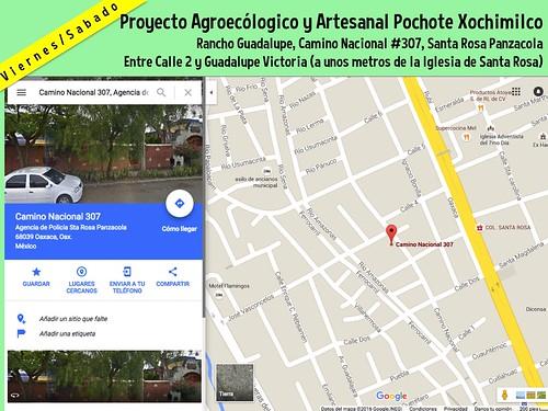 Pochote Viernes & Sabado (Oaxaca, Mexico)